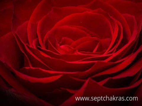 Symbolisme, propriétés et signification de la couleur rouge
