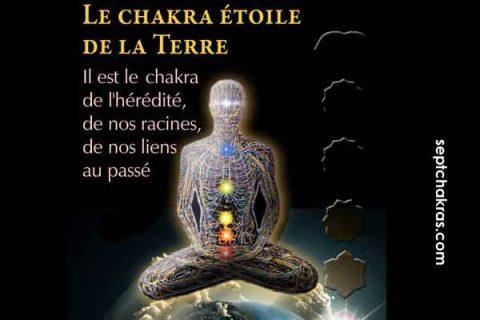 Le chakra étoile de la Terre, mémoire de notre hérédité et de notre passé