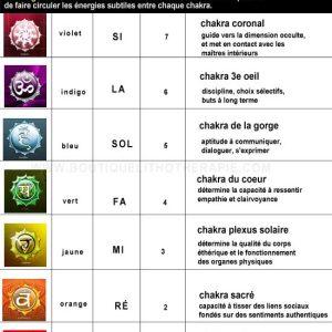 Harmonisation des chakras par le son