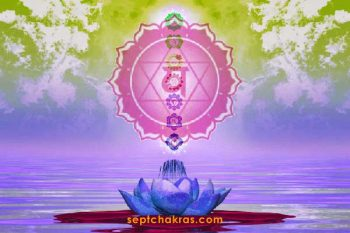 importance chakras secondaires