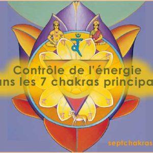 Contrôle de l'énergie dans les 7 chakras principaux