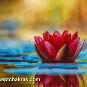 Apprenez à ressentir les sensations des chakras actifs