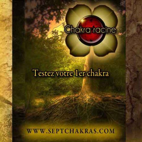 Testez votre 1er chakra, le chakra racine